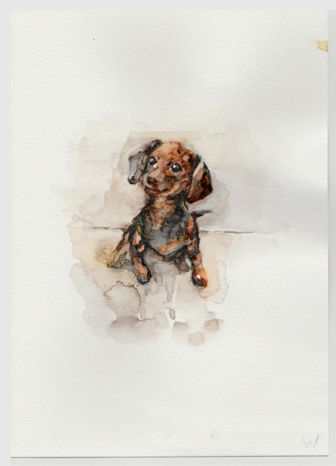watercolor 7-